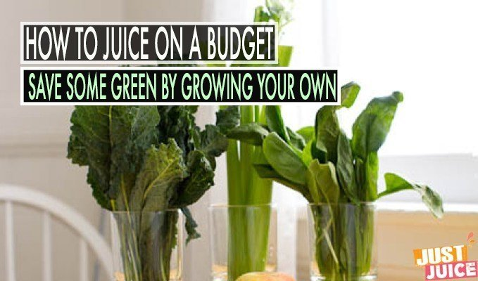 grow your greens to save money