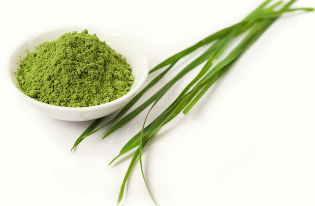 juicing superfoods barley grass
