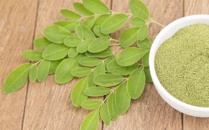juicing superfoods moringa