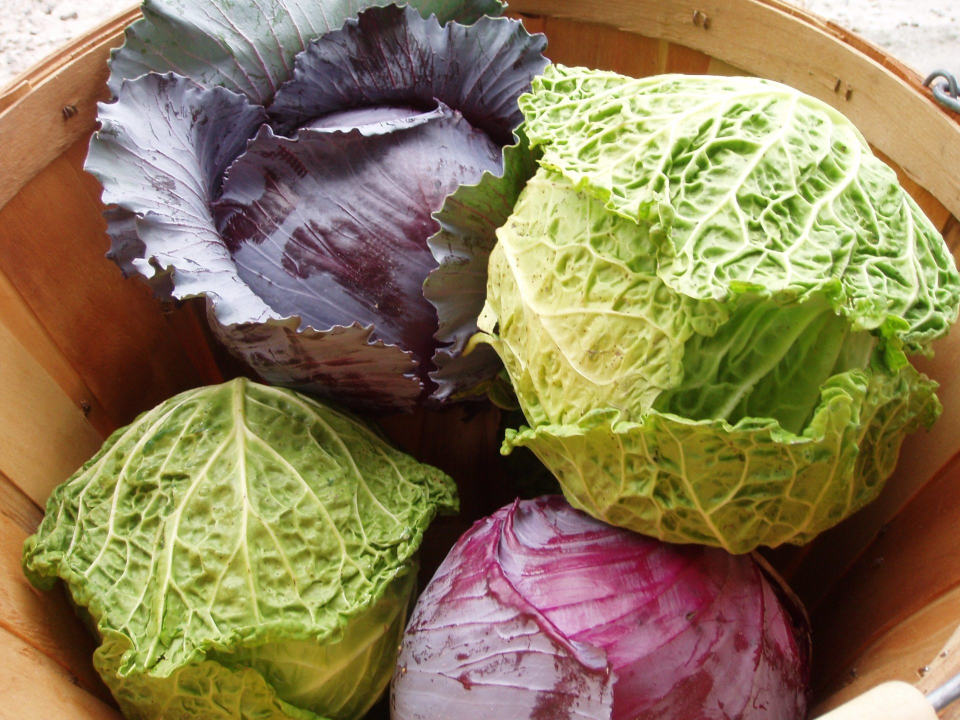 cancer-fighting supergreens